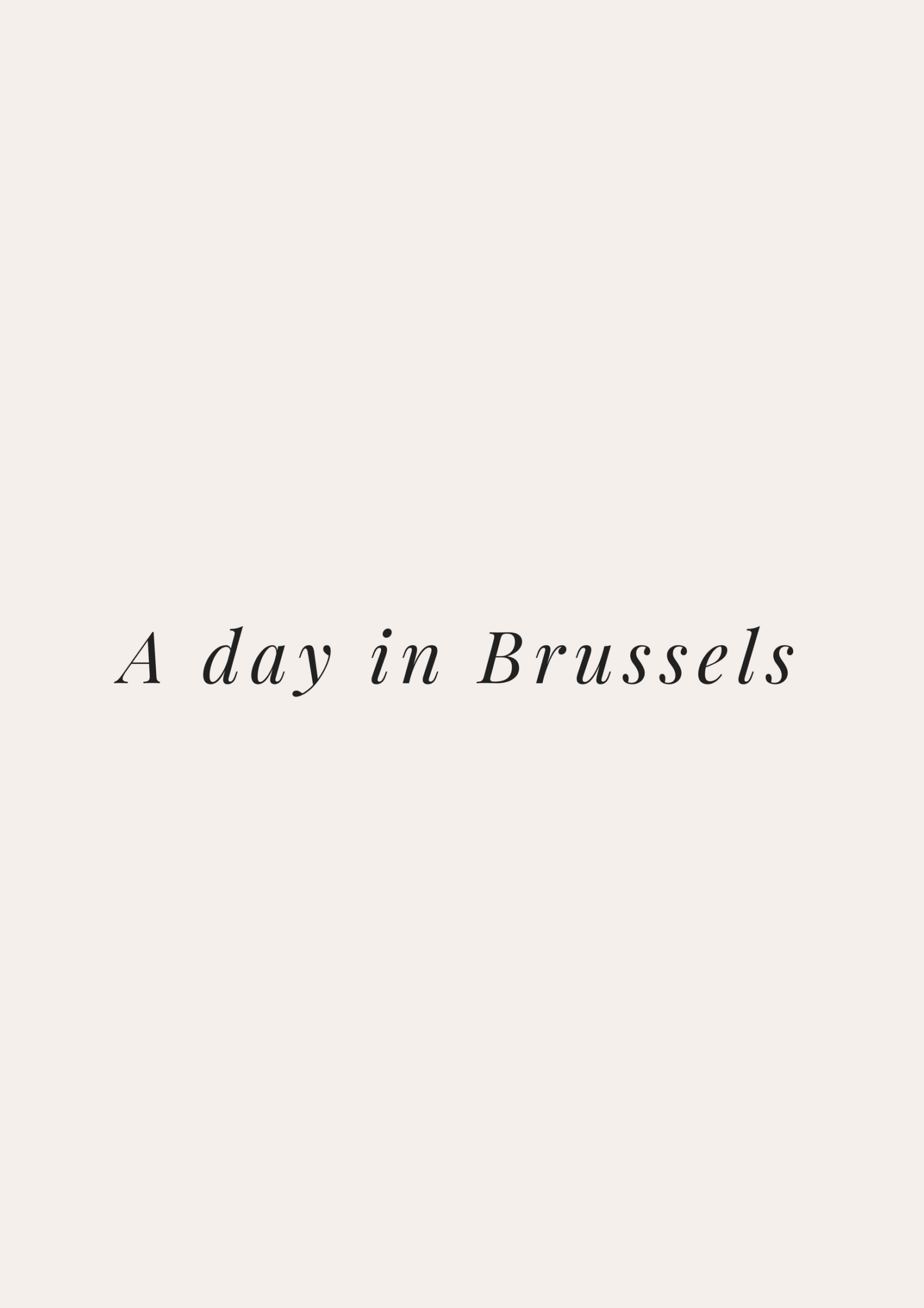 A Day In Brussels