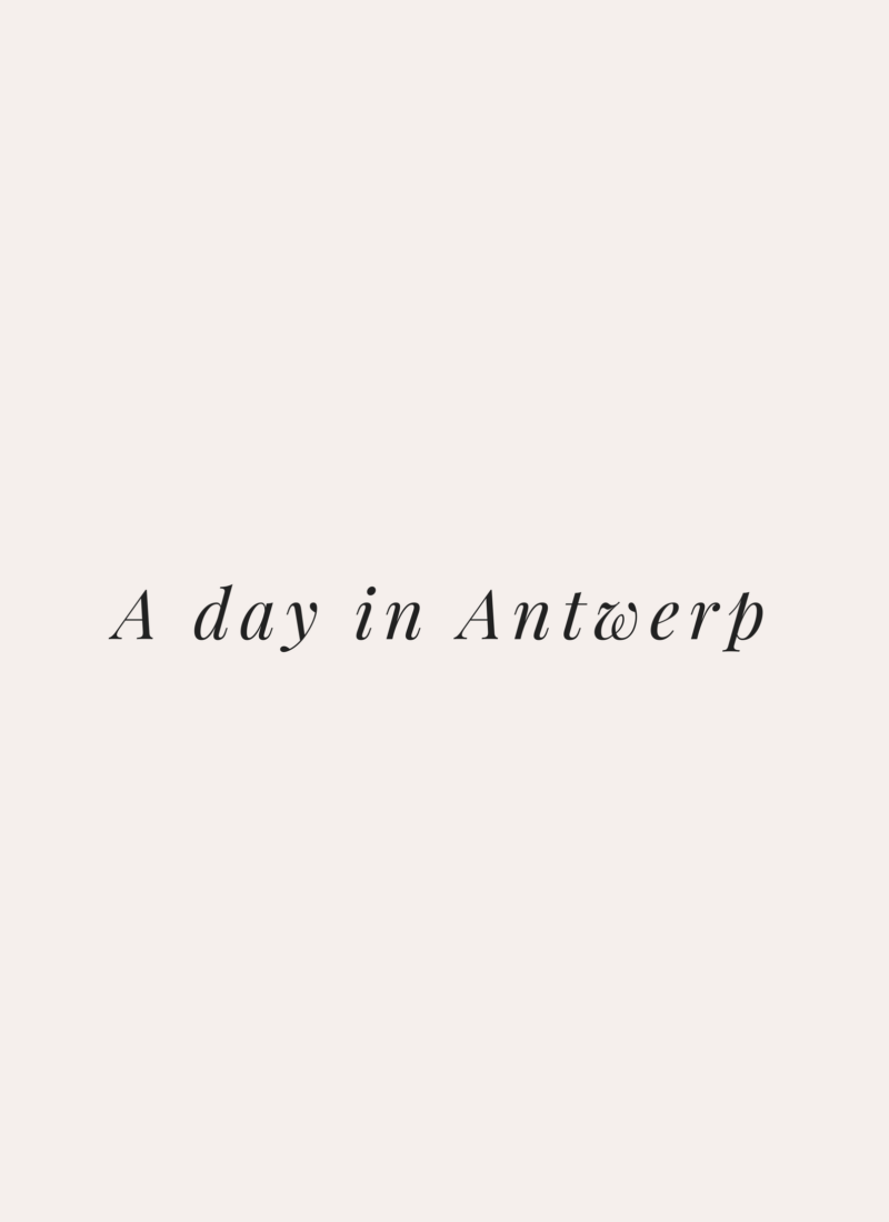A Day In Antwerp
