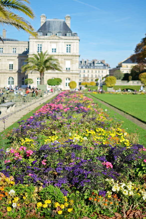 Jardin de Luxembourg in the fall