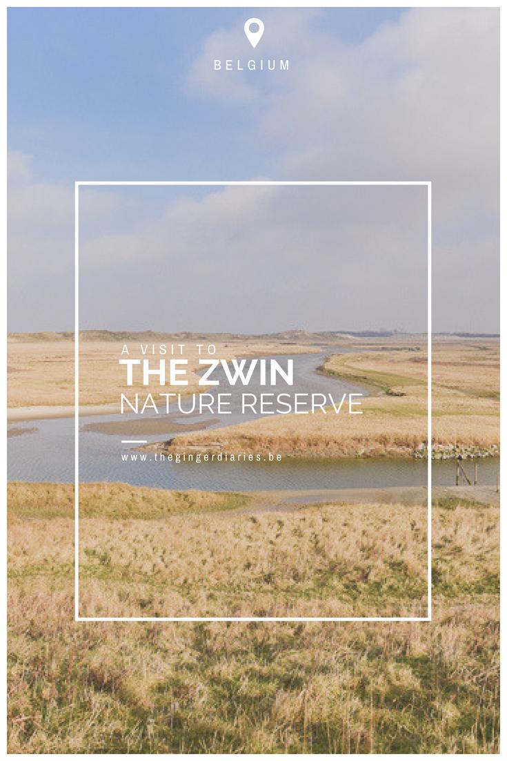 Visting The Zwin Nature Park in Belgium